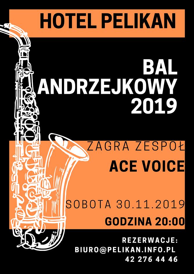 BAL ANDRZEJKOWY 2019(4)